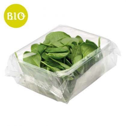 spinacino - baby spinach