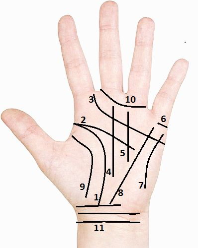 Our Services - Palm Reading - Palmistry