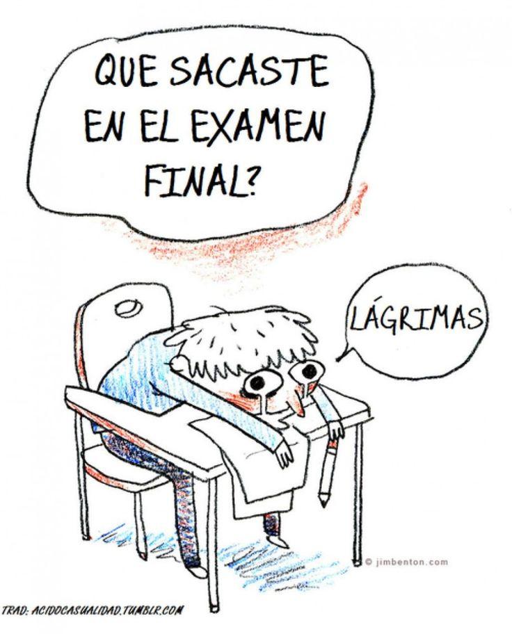 ¿Qué sacaste en el examen final
