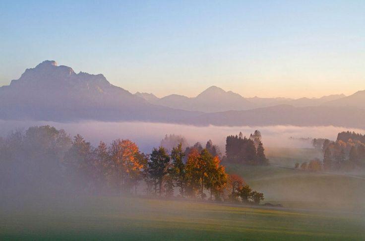 «С первым осенним холодком жизнь начнется сначала».  © Фрэнсис Скотт Фицджеральд