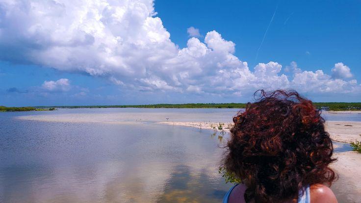 #cozumel #caraibi #ocean #playa #video #vlog #vlogging #travelblog #pinalapeppina #viaggi #viaggiare #messico #mexico #vacanze #summer #ocean