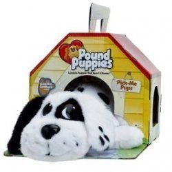 I loved my pound puppies <3: Pound Puppies, Childhood 80S90S, 80S Toys, Blast, Childhood Memories, Poundpuppies, Awesome Childhood, Memories Lane, 80 S