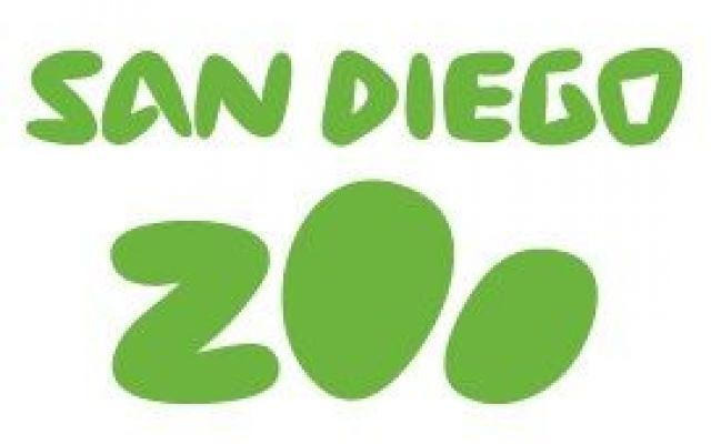 A spasso per lo Zoo di San Diego, tra un panda gigante e rinoceronti #sandiegozoo #zoo #sandiego