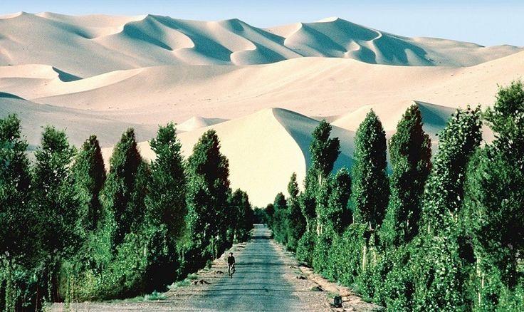 La gran muralla verde del Sáhara contra la desertificación - https://www.meteorologiaenred.com/la-gran-muralla-verde-del-sahara.html