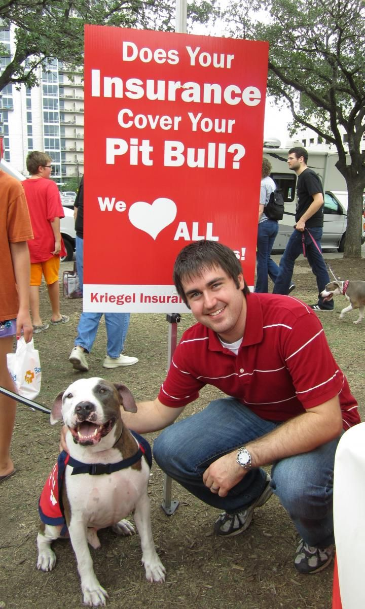 A list of insurance providers that do not discriminate by breed.  Also has printable handouts :)