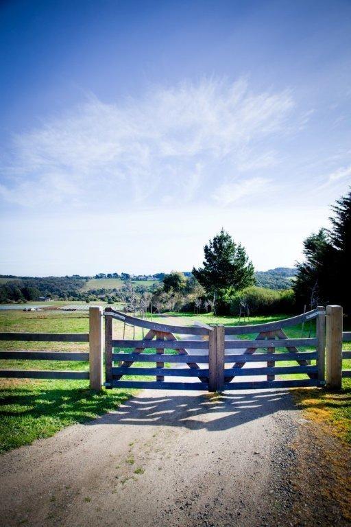 Red Hill Lavender Farm & Distillery - Marquee Style Wedding