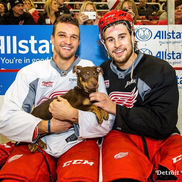 Luke Glendening and Brendan Smith of the Detroit Red Wings pose with Maverick, a puppy from the Michigan Humane Society.