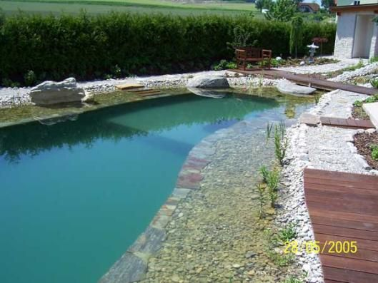 38 best images about bio piscina on pinterest swim for Bio piscina