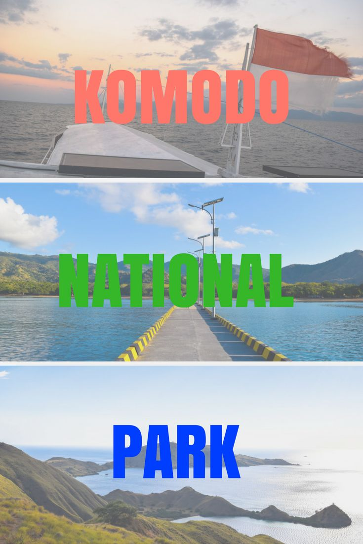 All your questions answered in this komodo island trip review of the 4 day tour from Lombok - Flores with Wanua Adventues. Truly a highlight of Indonesia!