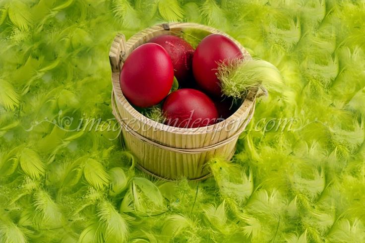 red eggs - product photos, Catering - oua / Photos product - catering - painted eggs / Fotos Produkt - Gastronomie - Rot bemalte Eier / Photos des produits - Traiteur - rouges des oeufs