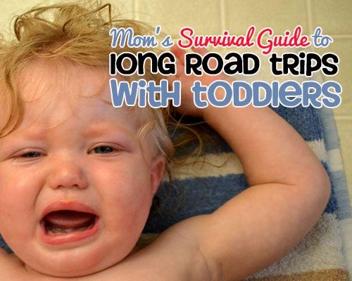 One Mom's Survival Guide to Long Road Trips with Toddlers
