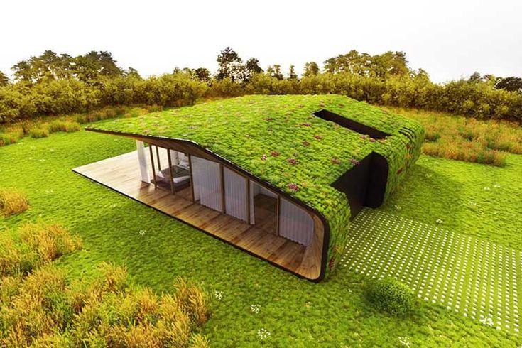 Temos visto diversos exemplos de arquiteturas que buscam integrar de maneira mais efetiva edificação e paisagismo.