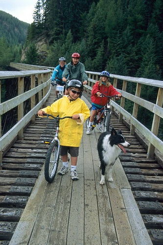 One of our favorite things to do on a beautiful Okanagan day is hike or bike the Kettle Valley Trestles.
