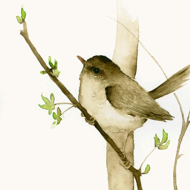 Bird Art Print - Little Brown Bird. $28.00, via Etsy.