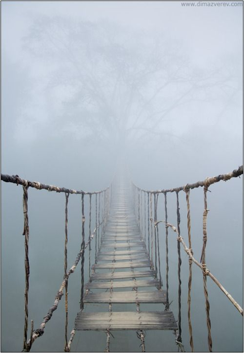 Vietnam. Rope Bridge, photography by Dima Zverev  beautiful image, but no running on bridge...