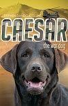 Caesar the War Dog by Stephen Dando-Collins.  #rwpchat #furread
