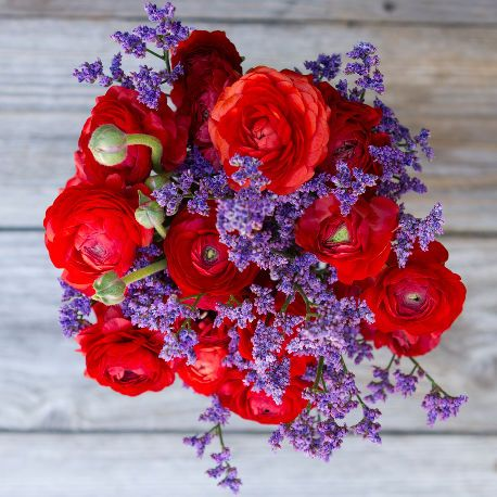 Ladybug | Lady in red. Guaranteed to ravish. FREE DELIVERY!* | flowers