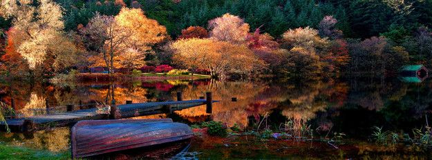 Scenic Autumn Lake Facebook Cover