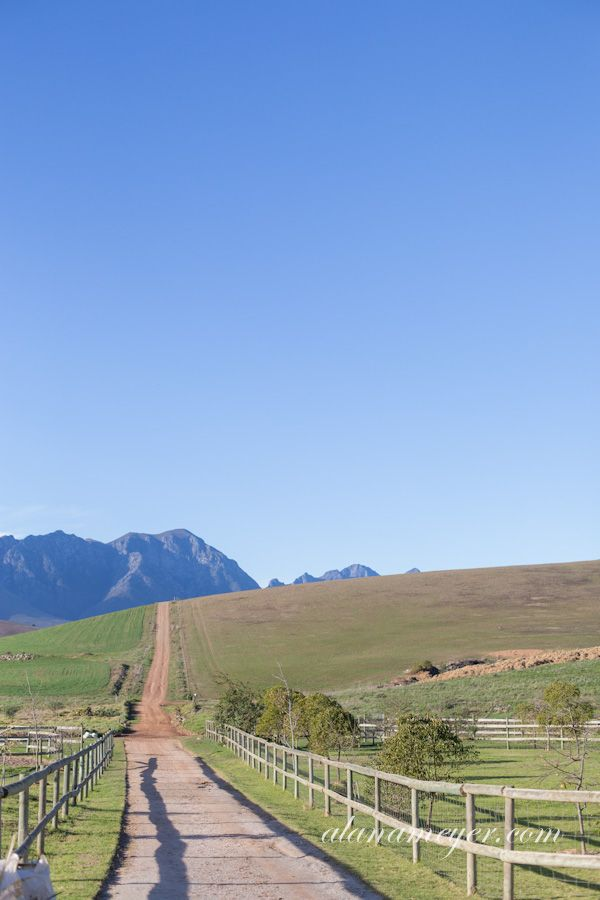 A visit to Greyton, Western Cape - Explore the World with Travel Nerd Nici, one Country at a Time. http://TravelNerdNici.com