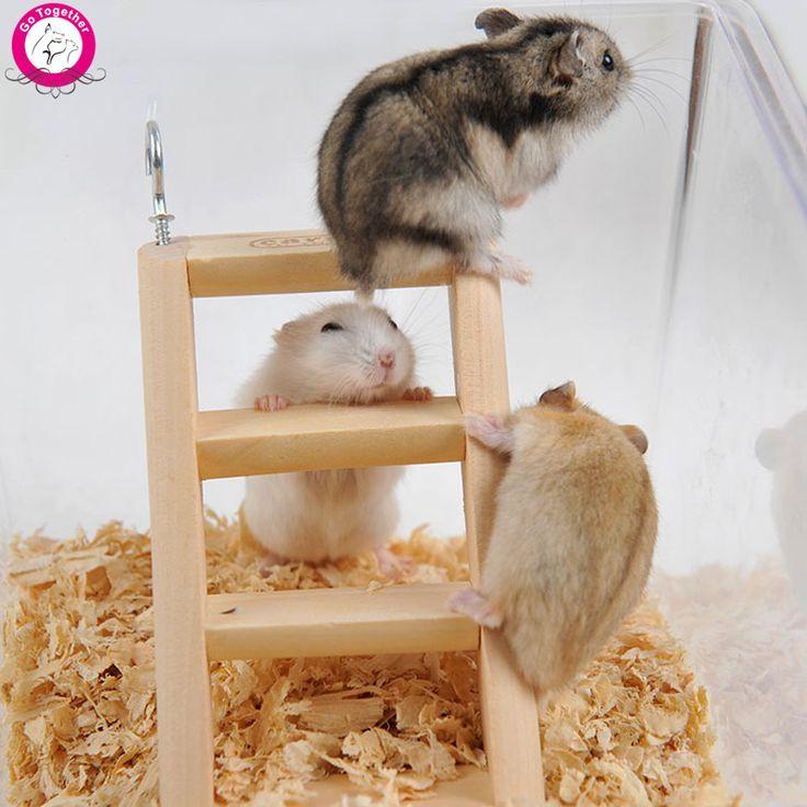 die 25 besten hamster spielzeug ideen auf pinterest rennmaus spielzeug ratte spielzeug und. Black Bedroom Furniture Sets. Home Design Ideas