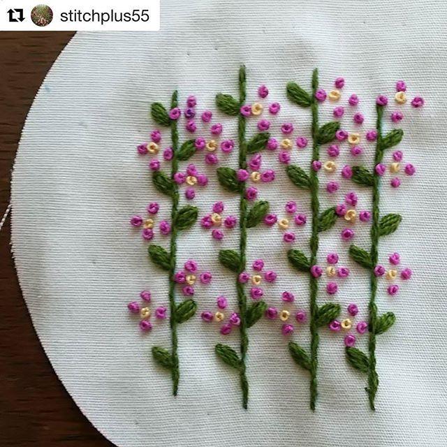 @stitchplus55 #needlework #handembroidery #broderie #embroidery #bordado #ricamo