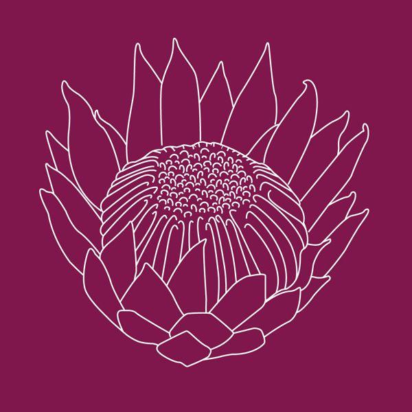 Protea Tattoo Concept by Michelle Lauren van den Berg, via Behance
