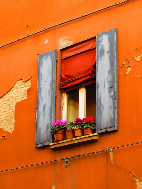 Bologna, Italy - Ah, the colore!