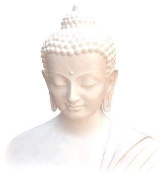 Prince Siddhartha Gautama / The Buddha (social title) / Translation (The one who awoke).