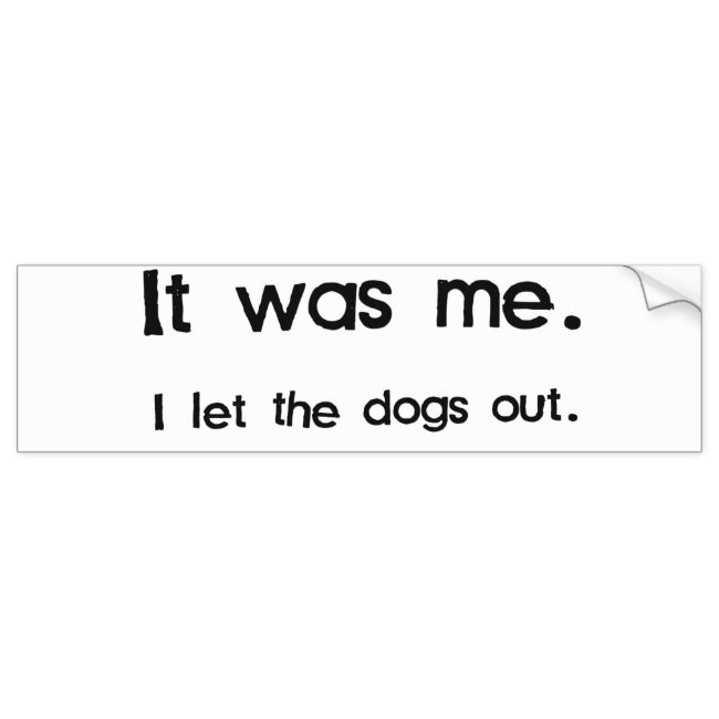It Was Me I Let The Dogs Out Bumper Sticker Zazzle Com Cool