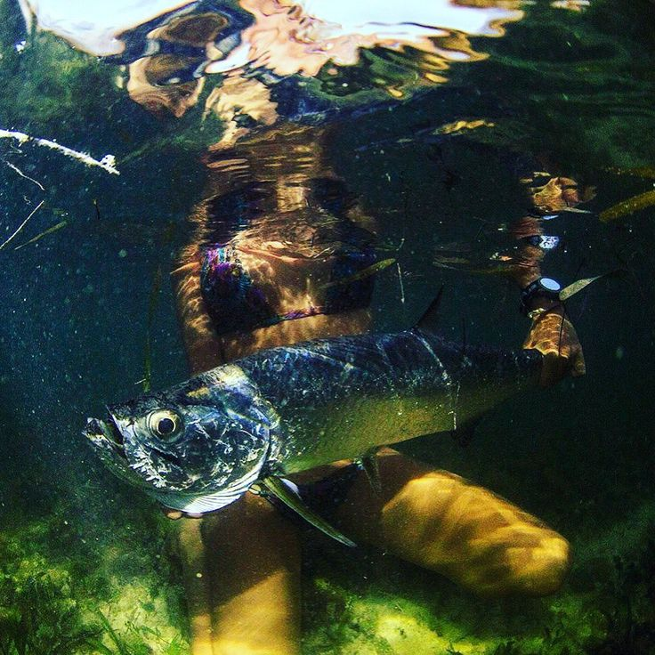 123 best images about coastalxp hot saltwater girls on for Brooke thomas fishing