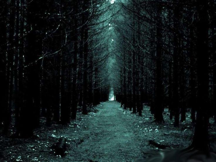 paisajes de bosques tenebrosos - Buscar con Google
