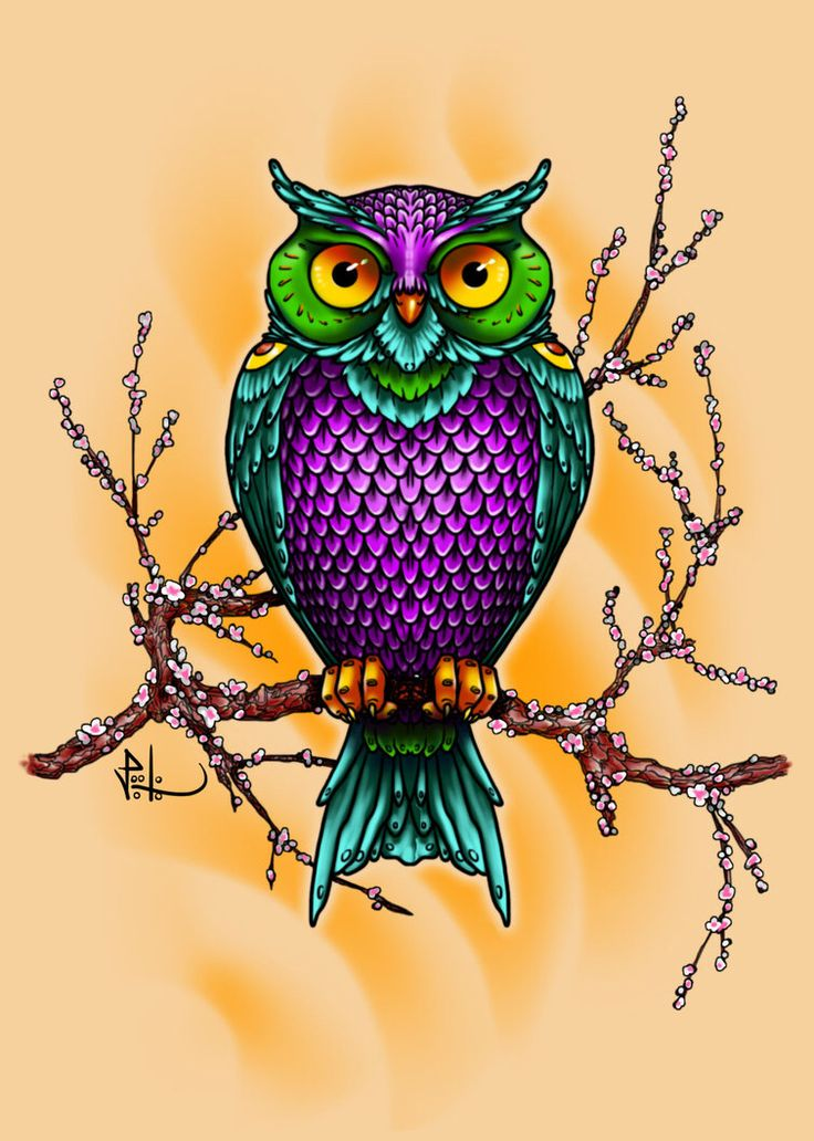 kdg how to color the owl for art to remember lessons tes teach