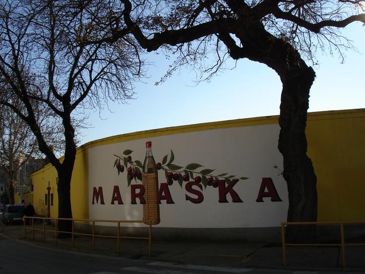 Maraska. Zadar Liquer. Croatia.
