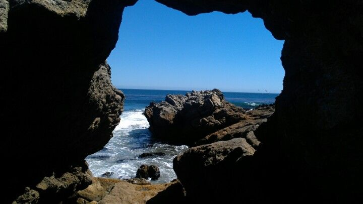 Love their caves and tide pools!