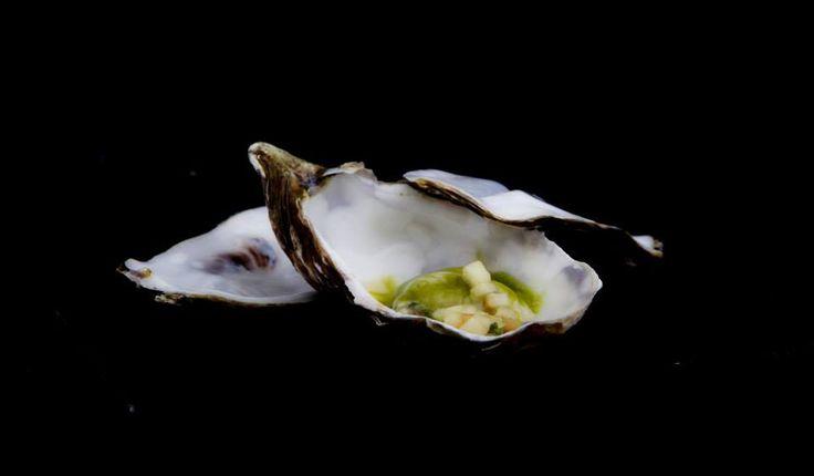 Дегустационно меню - лято 2014: Филе от лаврак и сочна стрида върху бреноаз от зелена ябълка, в сос от магданоз и шампанско придават морски нюанс на гурме вечерята в един от най-добрите ресторанти на Варна.