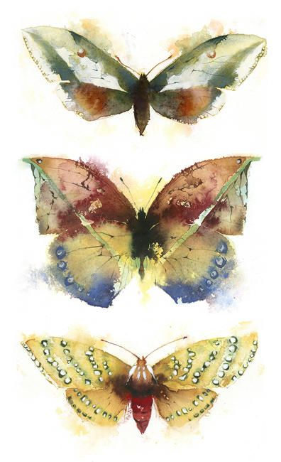 Kate Osborne | Water Colour Illustration | http://www.kateosborneart.com/
