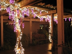 I Have The Pergola Now If Only My Man Felt Like Putting Lights On It