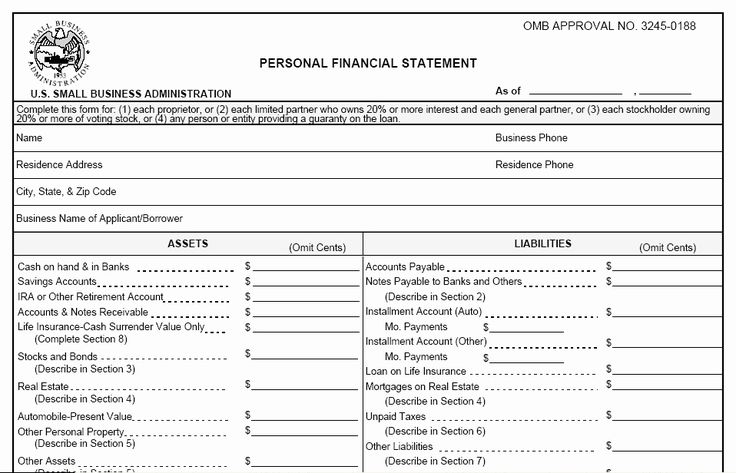 Free Personal Financial Statement Template Inspirational 3