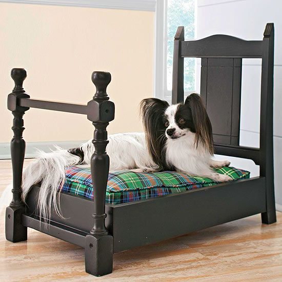 Pet bed made from an old chair. Cut the back and front legs from the chair and discard the rest. Measure the width of the chair back, and build a frame out of inexpensive pine boards or plywood. Attach the chair back to one end of the frame and the legs to the opposite end using wood glue and screws, then prime and paint it a unifying color. Add a washable cushion or dog/cat bed.