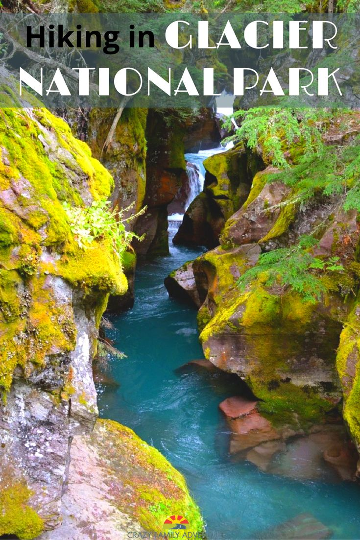 The best way to see a National Park is by getting out and exploring. Check out these hikes in Glacier National Park with kids when planning your next visit!
