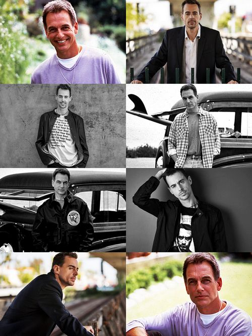 """""""Photoshoots: Mark & NCIS Cast ↳ Mark Harmon (1997) and Sean Murray (2017) """""""