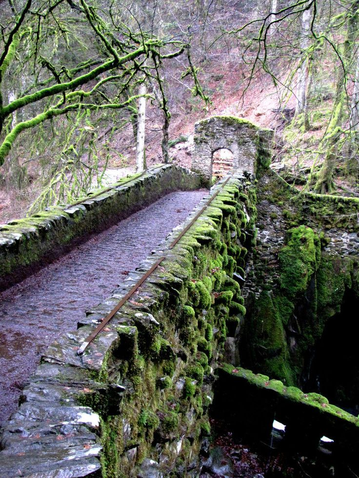 Stone bridge at The Hermitage site in Dunkeld, Scotland. The bridge dates to 1770.