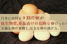 日本に出回る9割の卵が抗生物質・薬品まみれの危険な卵だった。安価な卵の裏側と、安全な卵の選び方。
