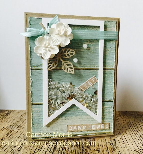 Shaker Card made with Stampin' Up! Serene Scenery DSP, Flourish Thinlits, Label Thinlits and Alphabet Labeler stamp set.