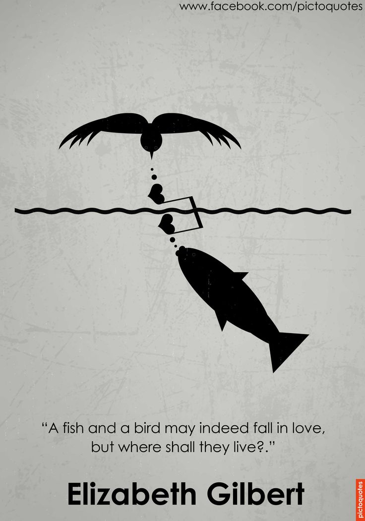 "A great quote about love, and the mismatch in love that probably some of us here already experienced.  ""A fish and a bird may indeed fall in love, but where shall they live?"" Elizabeth Gilbert ‪#‎quote‬ ‪#‎quoteoftheday‬ ‪#‎love‬ ‪#‎match‬ Via PictoQuotes Feel free to share."