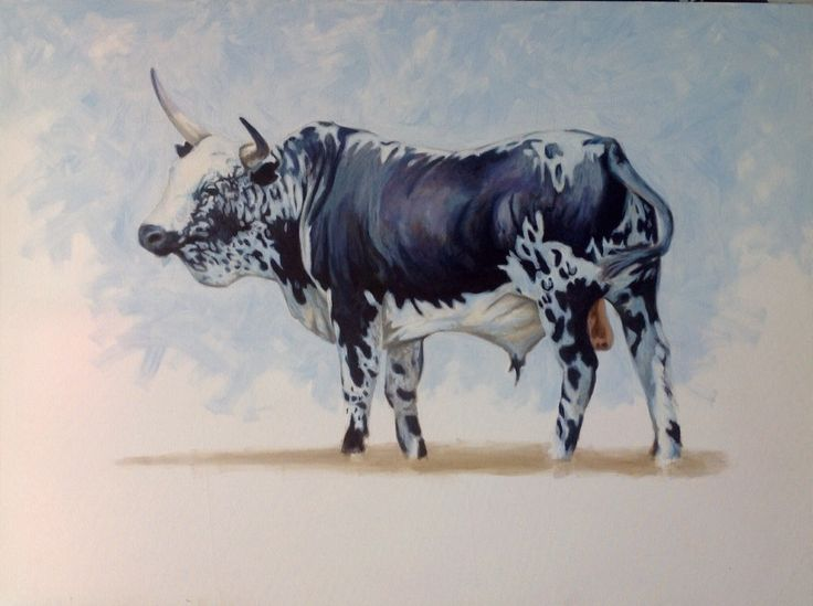 Nguni Bull, large oil painting by Murray www.nguniart.co.za