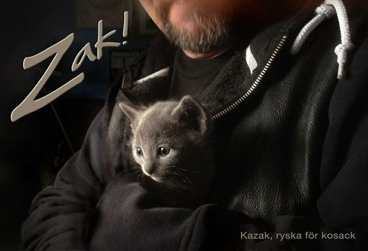 Little Russian boy - Zak. Four weeks old. His eyes will turn to a beautiful emerald green when he gets older.