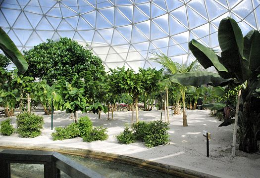 "Walt Disney World's ""The Land Pavilion"" at The Tropical Greenhouse in Orlando, Florida.  Photo: Britt Conley"
