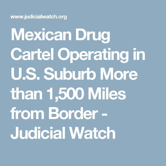 1000+ ideas about Drug Cartel on Pinterest | Drug cartel ...