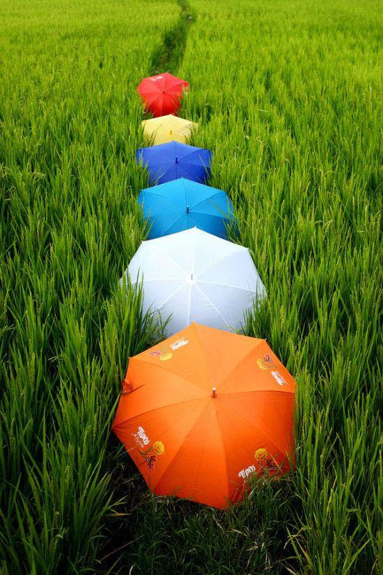 Umbrella track - colour photography ideas